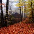 渥村的秋天