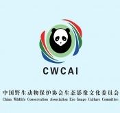 关于举办中国第二期观鸟导游职业技能培训班