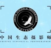 中国生态摄影师集训班