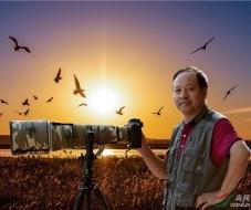 【中国野生动物摄影师】塞北杨柳:鸟网——