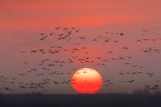 太阳升起的时候
