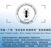 """2019中国·广西""""生态龙州 秘境弄岗""""昆虫"""
