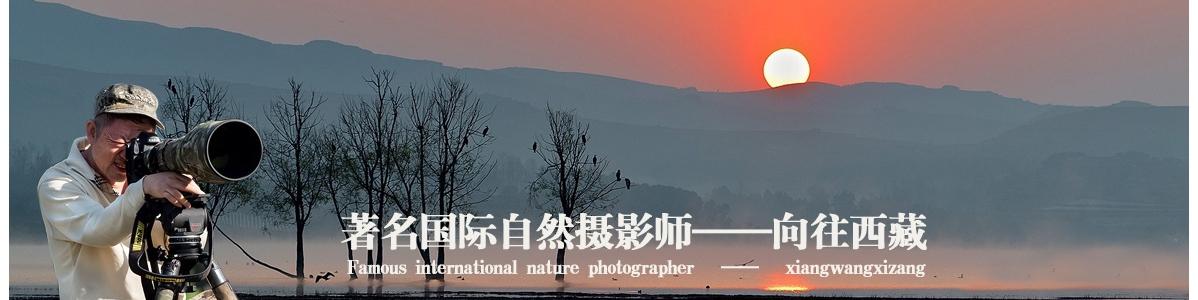 003【国际自然摄影师】向往西藏:回首向来