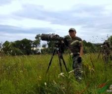 【中国野生动物摄影师】民兵连长:夜鹭扑鱼