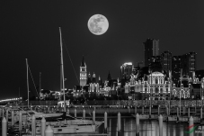 《明月照港湾》