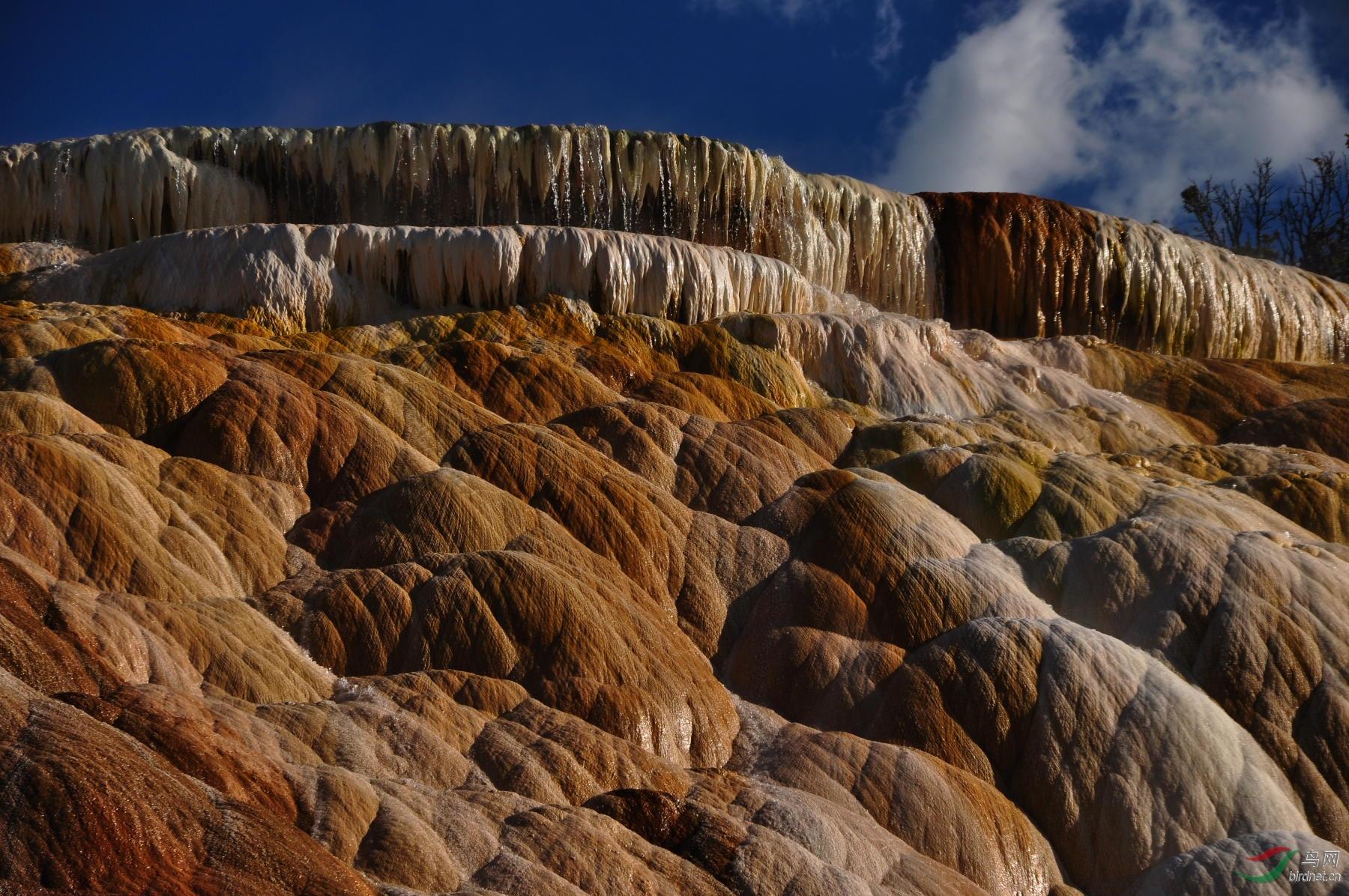 美国黄石国家公园石灰台阶