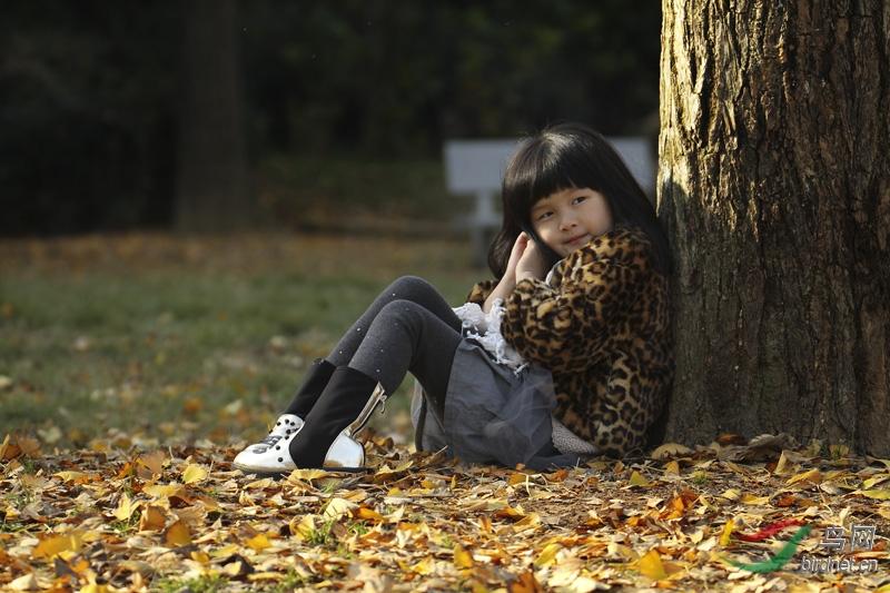 银杏叶中可爱的小女孩-标准地理Geography米体重163女生风光图片