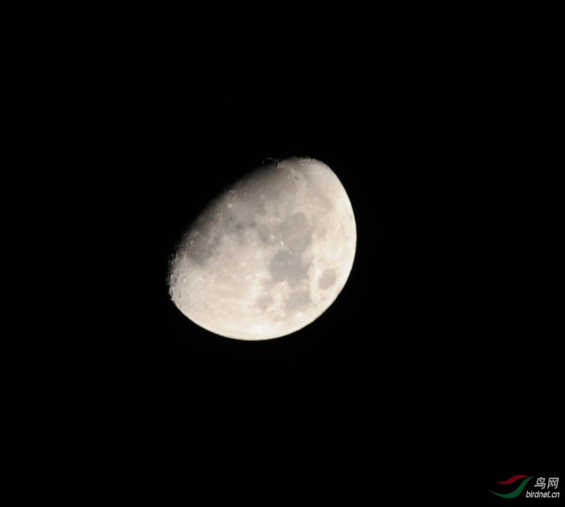 农历二月十一的月亮