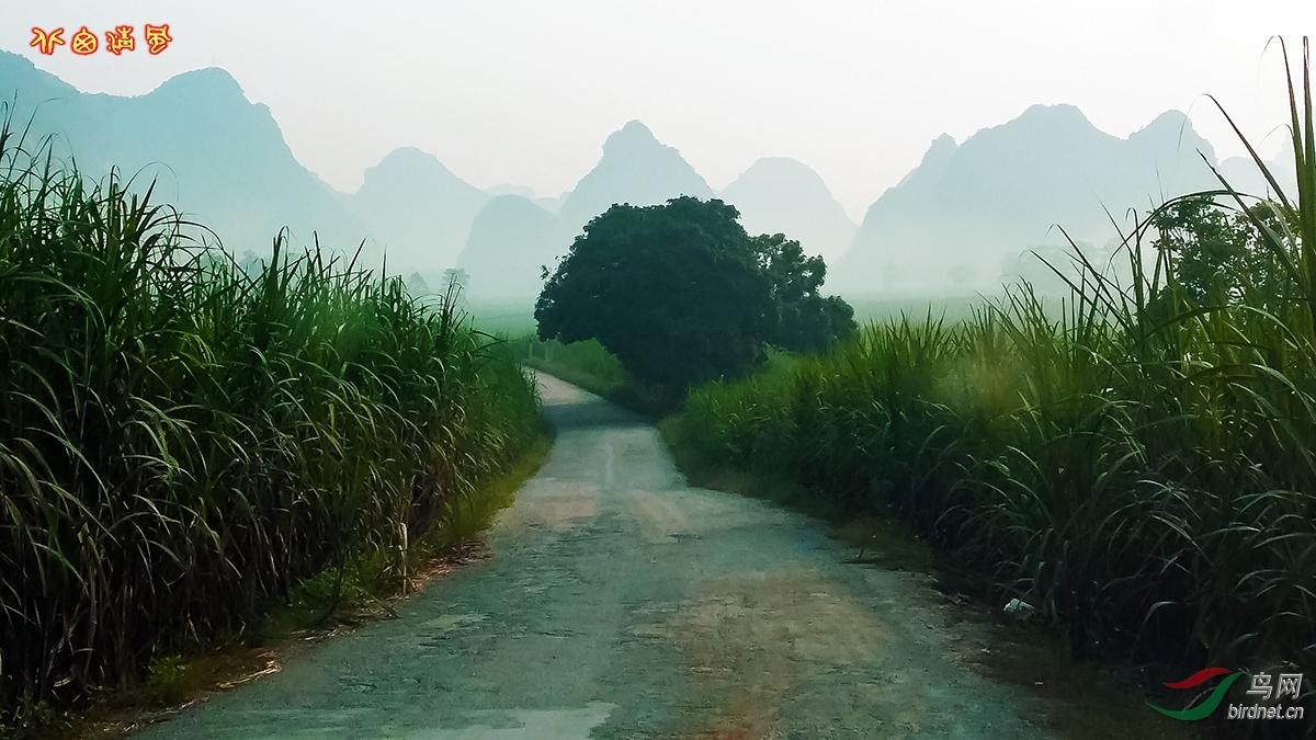 长条山水风景图片