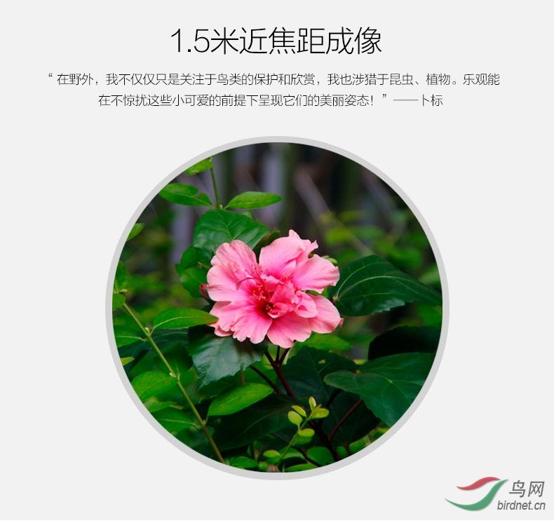 产品描述-乐观Ⅱ--790_11.jpg