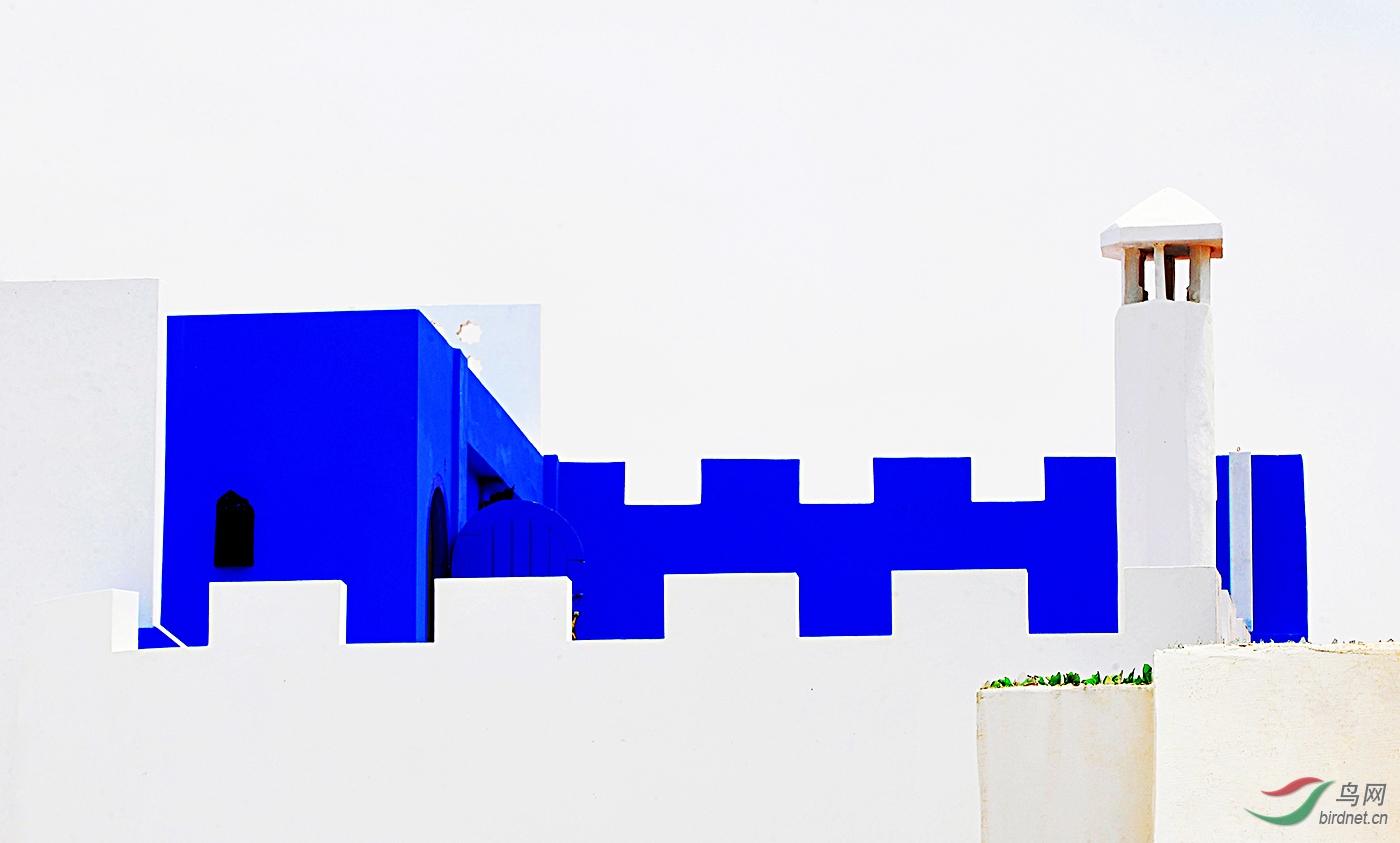 79--《蓝与白 》--沈瑜.jpg