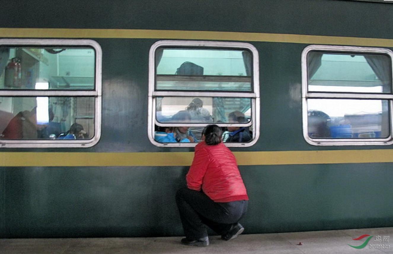 2011年春运郑州火车站站台一辆绿皮火车发车前,一位母亲蹲在车窗外与车内女儿话别。.jpg