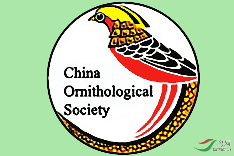 中国鸟类学会 标.jpg