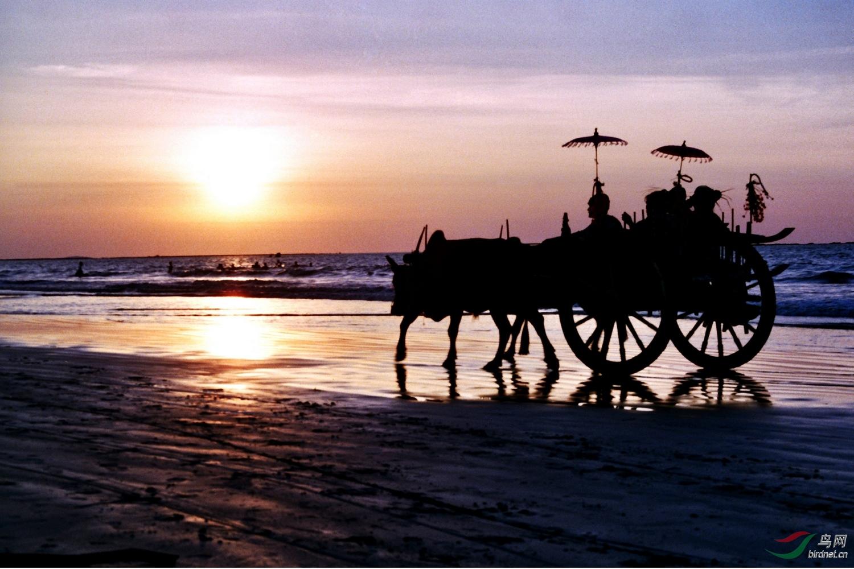 1.缅甸羌达海滩(此照片为胶片照,2006年转换为数码)