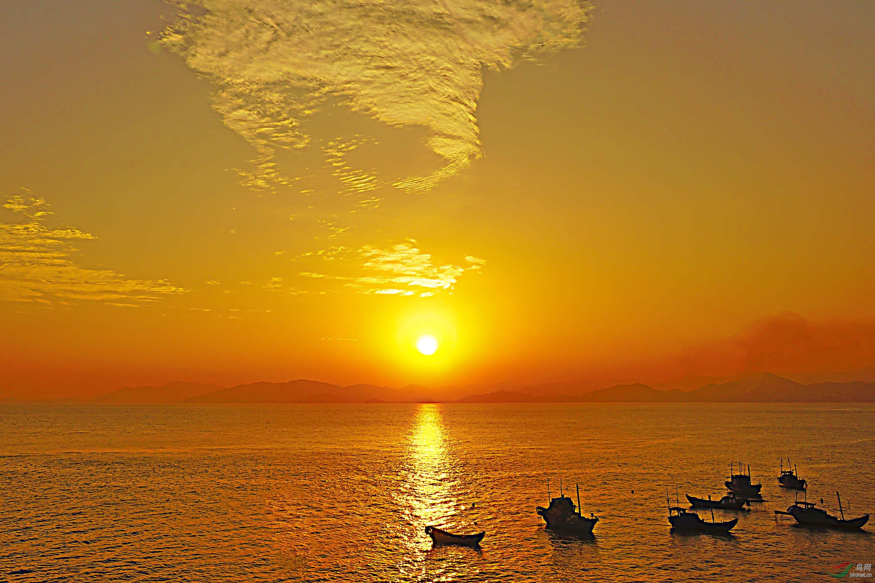 《夕阳红》1.jpg