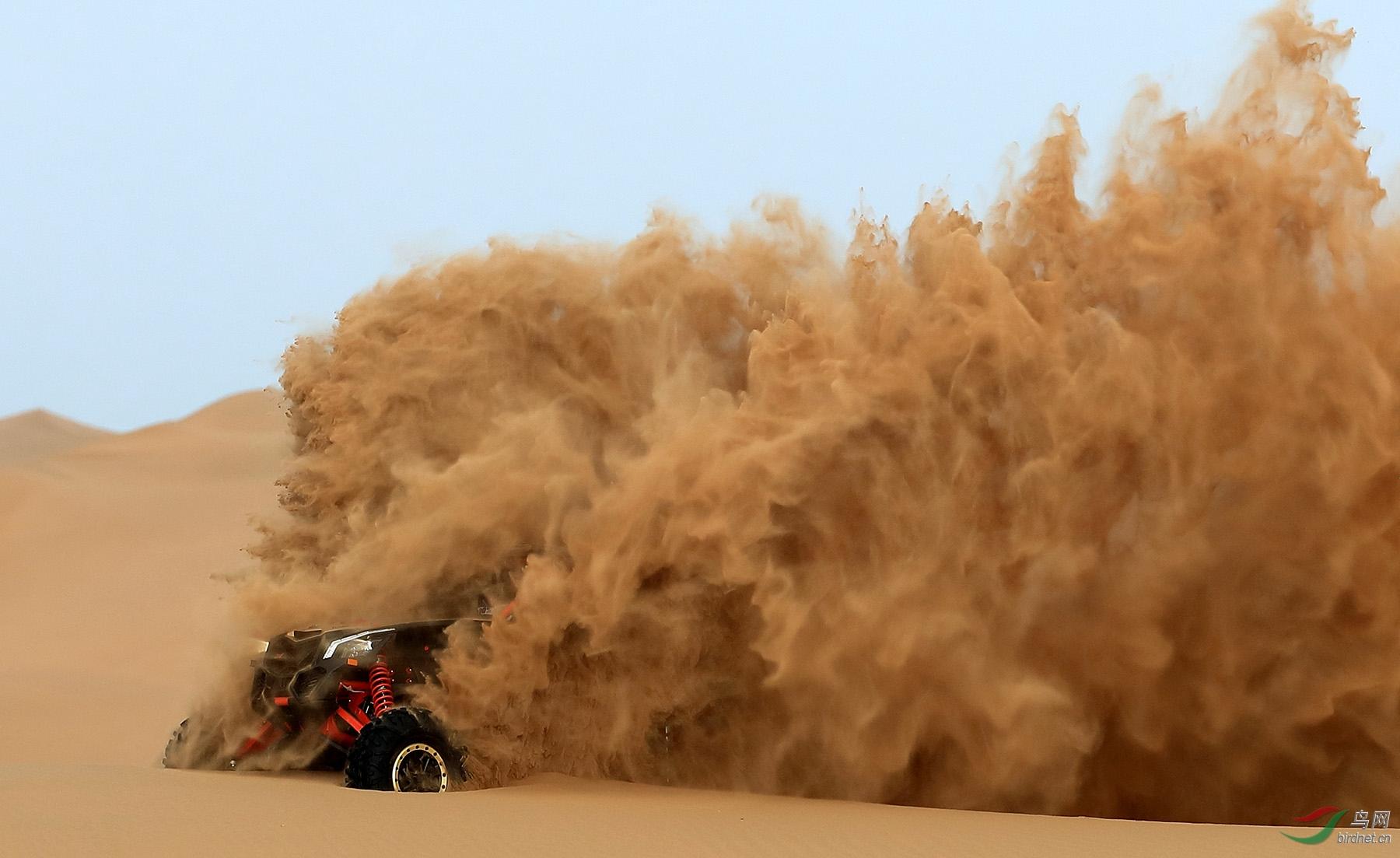 激活沉睡的沙漠.jpg