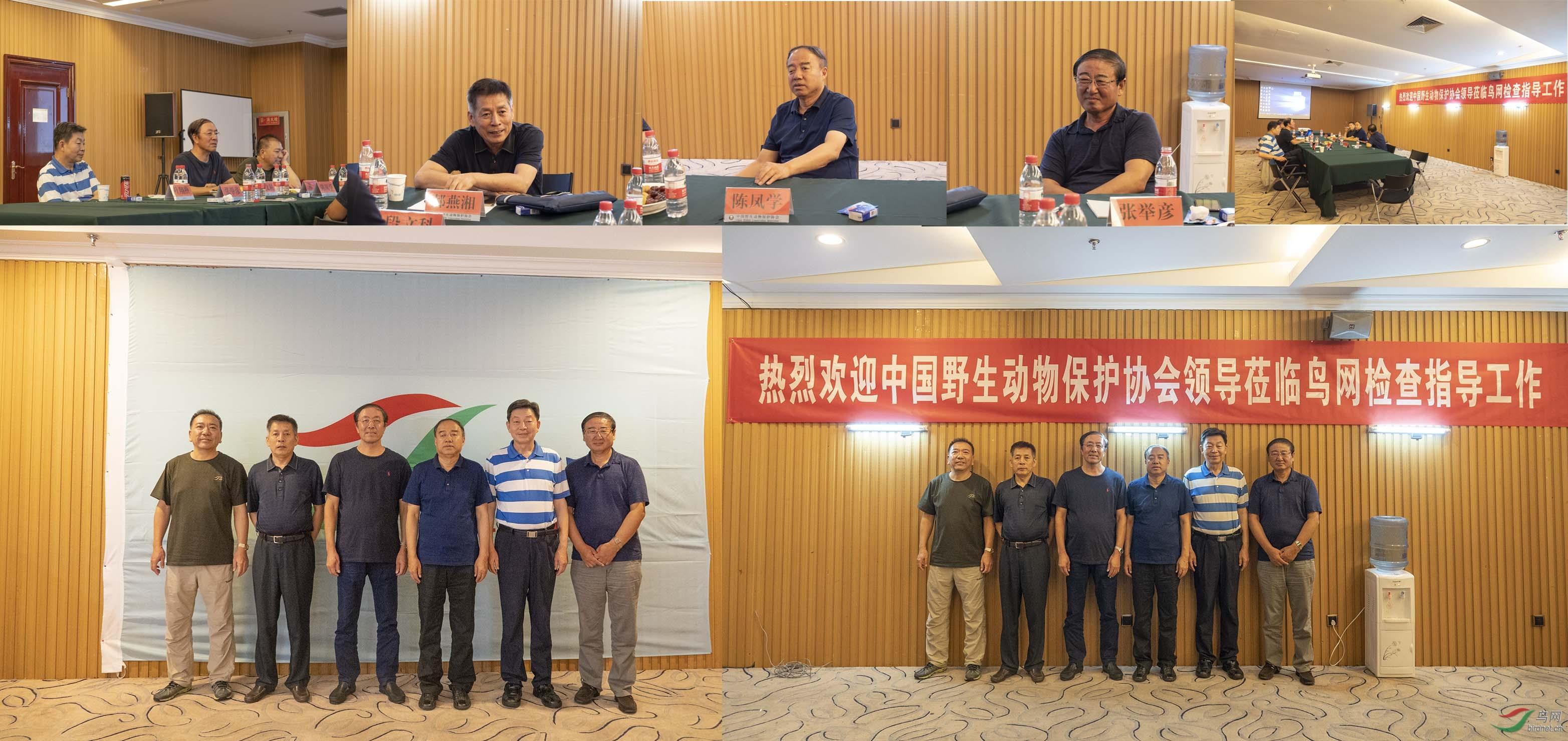 中国野生动物保护协会领导莅临鸟网检查指导工作.jpg