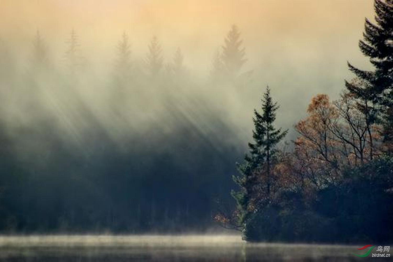 2019009.网上找到下载的瓦尔登湖一景