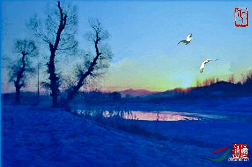 风景如画 - 艺术创意 鸟网