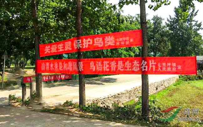 七里坪镇政府宣传横幅1.jpg