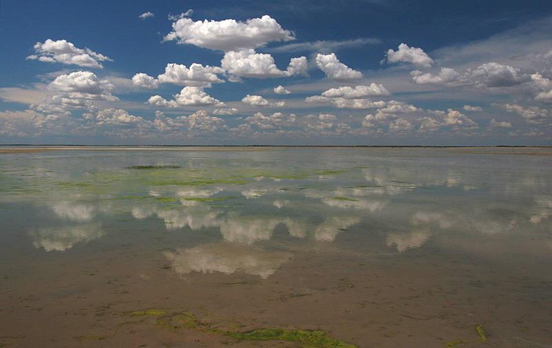 向海蒙古族乡风景