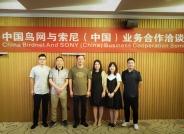 中国鸟网与索尼(中国)举行业务合作洽谈会