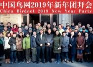 鸟网2019新年团拜会纪实