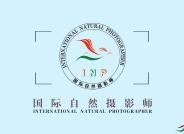 鸟网国际自然摄影师积分晋级管理办法