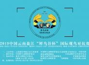 """2019中国云南盈江""""犀鸟谷杯""""国际观鸟挑战赛"""