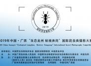 """2019中国・广西""""生态龙州 秘境弄岗""""昆虫类国际摄影大赛征稿启事"""