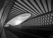 鲁瞳桥------祝贺荣获黑白影像华盈彩票精华!
