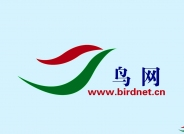 关于上传中国鸟类图库和哺乳动物图库物种数量及称号的最新规定