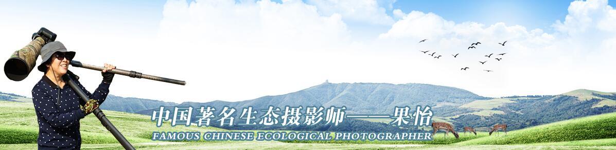 019【中国生态摄影师】果怡: 志向和热爱是伟大行为的双翼