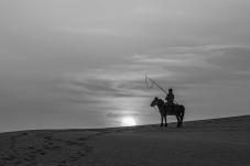 清晨放牧的牧民