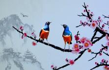 春花怒放鸟传情
