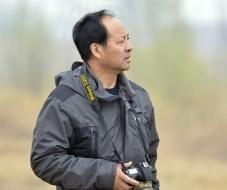 塞北杨柳:鸟网——鸟友的欢乐之家