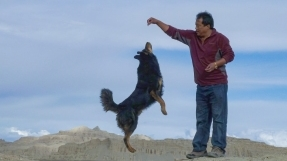 西藏记忆---拍鸟前的历程