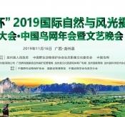 中国鸟网2019年年会—报到篇