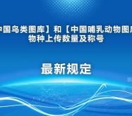 中国鸟类图库和哺乳动物图库物种上传数量及