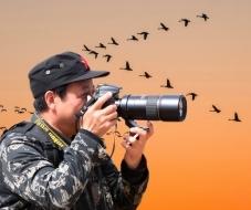 塞北杨柳:鸟网——鸟友的欢乐之家!