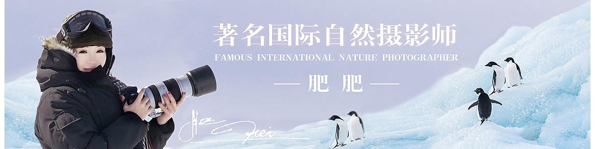 006【国际自然摄影师】肥肥:不忘初心,努