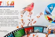 """第九届""""东方飞羽""""野生鸟类生态摄影展"""