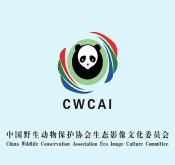 中国野生动物保护协会生态影像文化委员会20