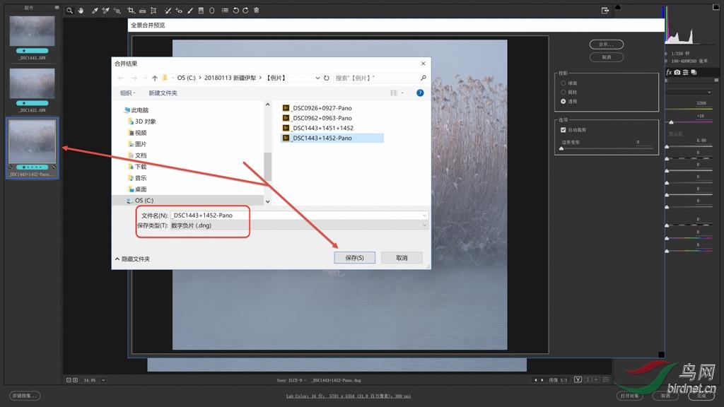 """04 接片 3:将合并结果保存为""""DNG""""文件——选择保存路径、命名,点【保存】最终完成接片 s.jpg"""