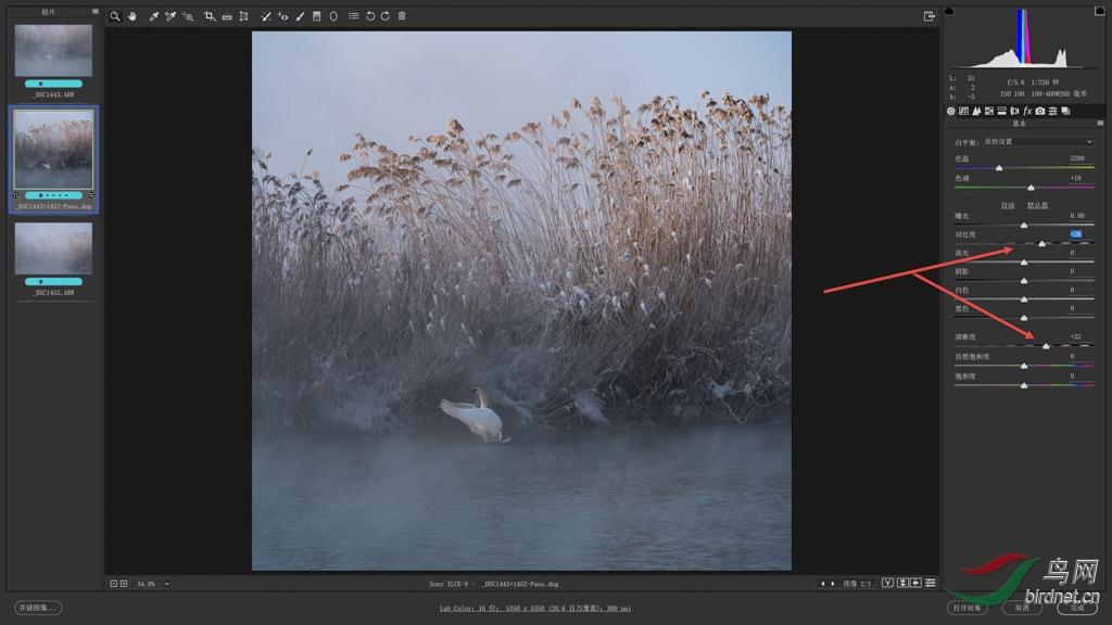 06 对比度:在基本工作面板向右拖动【对比度】和【清晰度】滑块增加图片反差 s.jpg