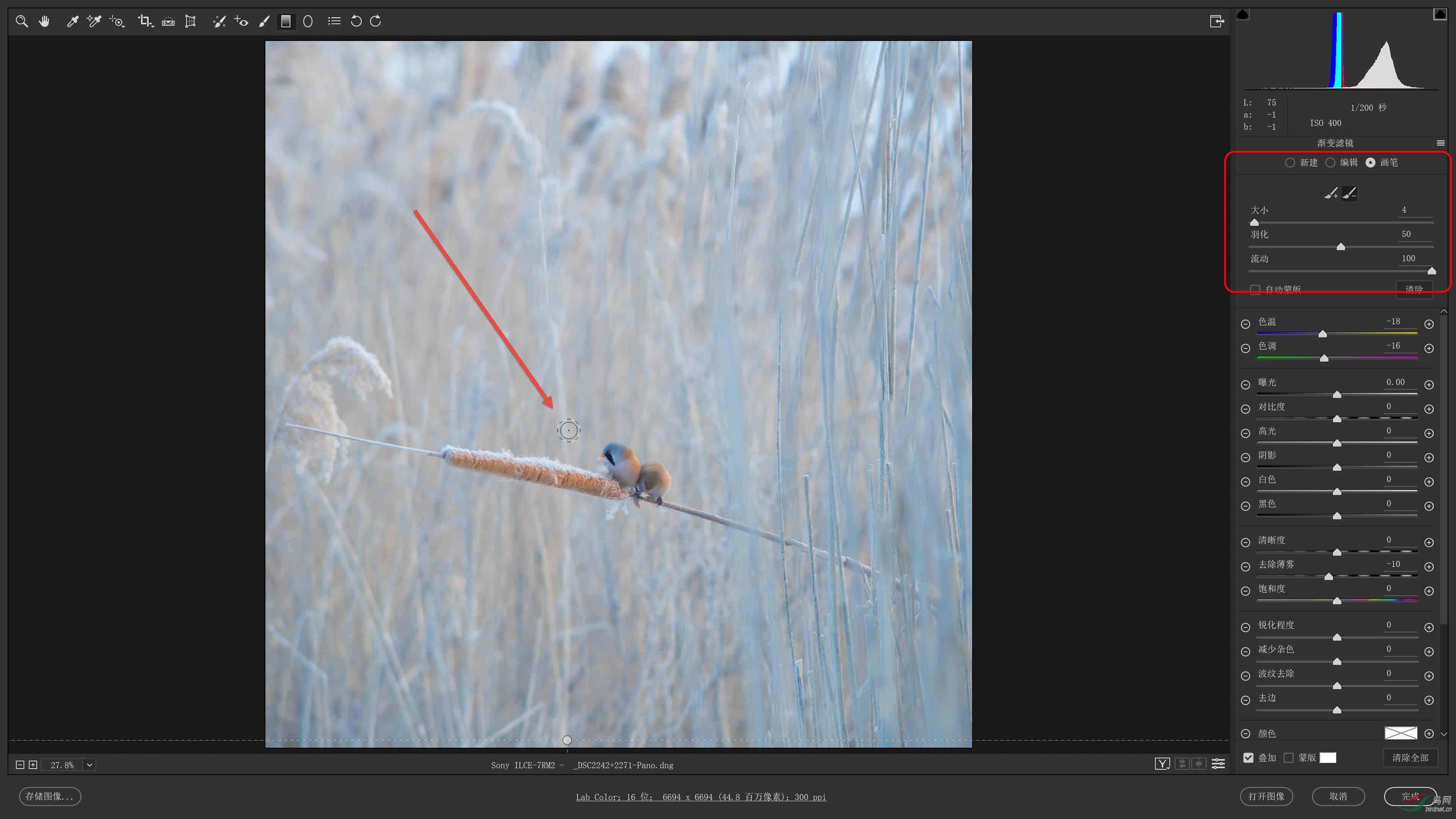 03 使用画笔工具将渐变滤镜效果从主体上移除.jpg