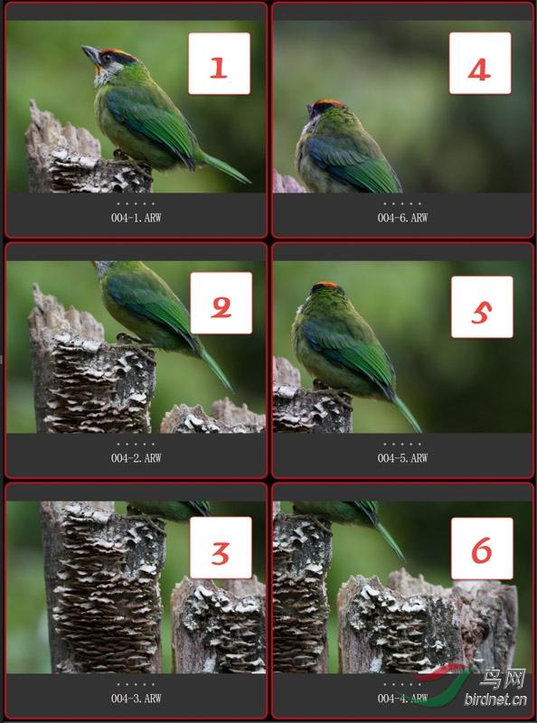 004-1 矩阵式接片的拍摄顺序.jpg