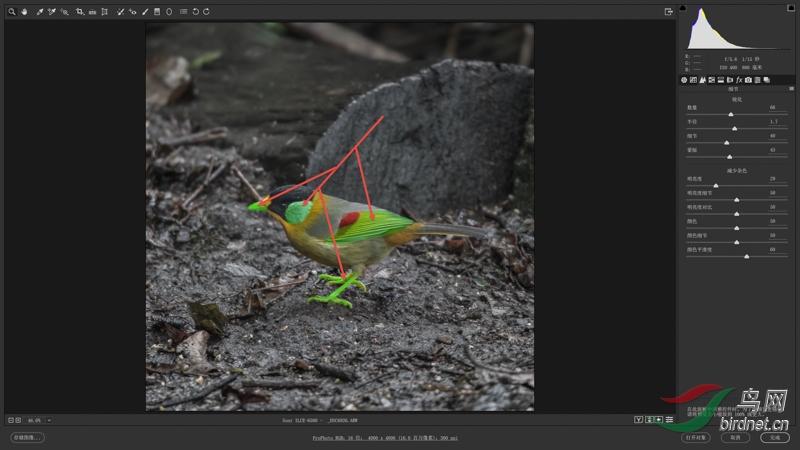 02-2 绿色标注区域叠加了进一步加强的锐化.jpg