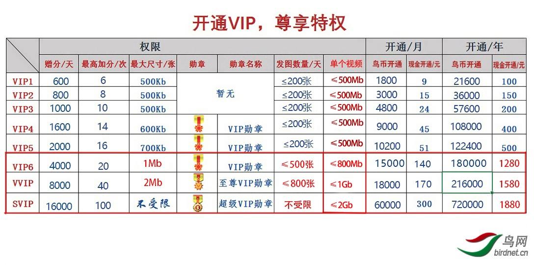 开通VIP,尊享特权.jpg