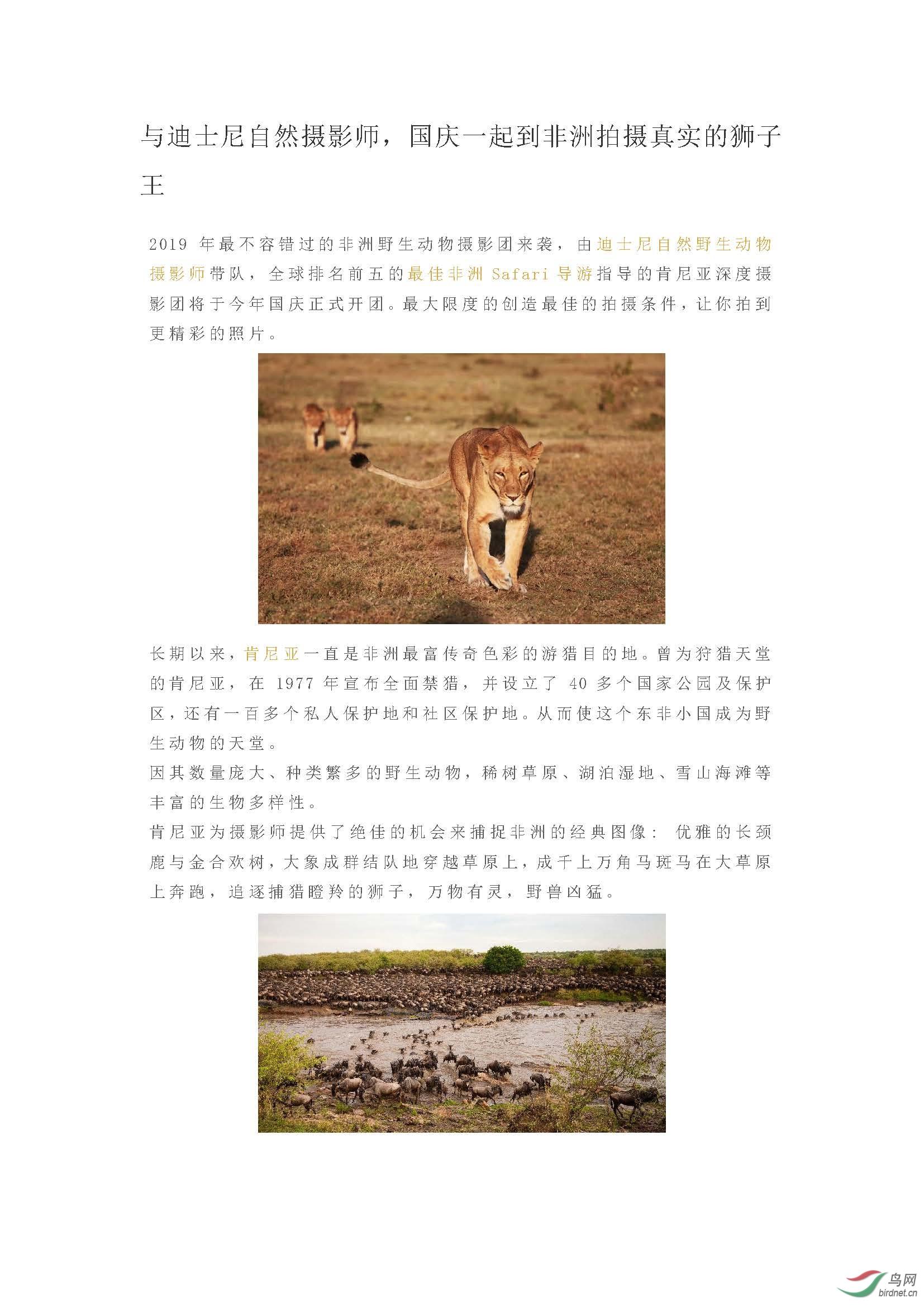 2019 国庆团  与迪士尼自然摄影师,国庆一起到非洲拍摄真实的狮子王_页面_01.jpg